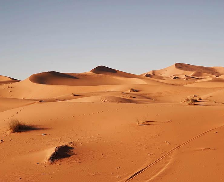 كتاب ابطال من الصحراء جرير